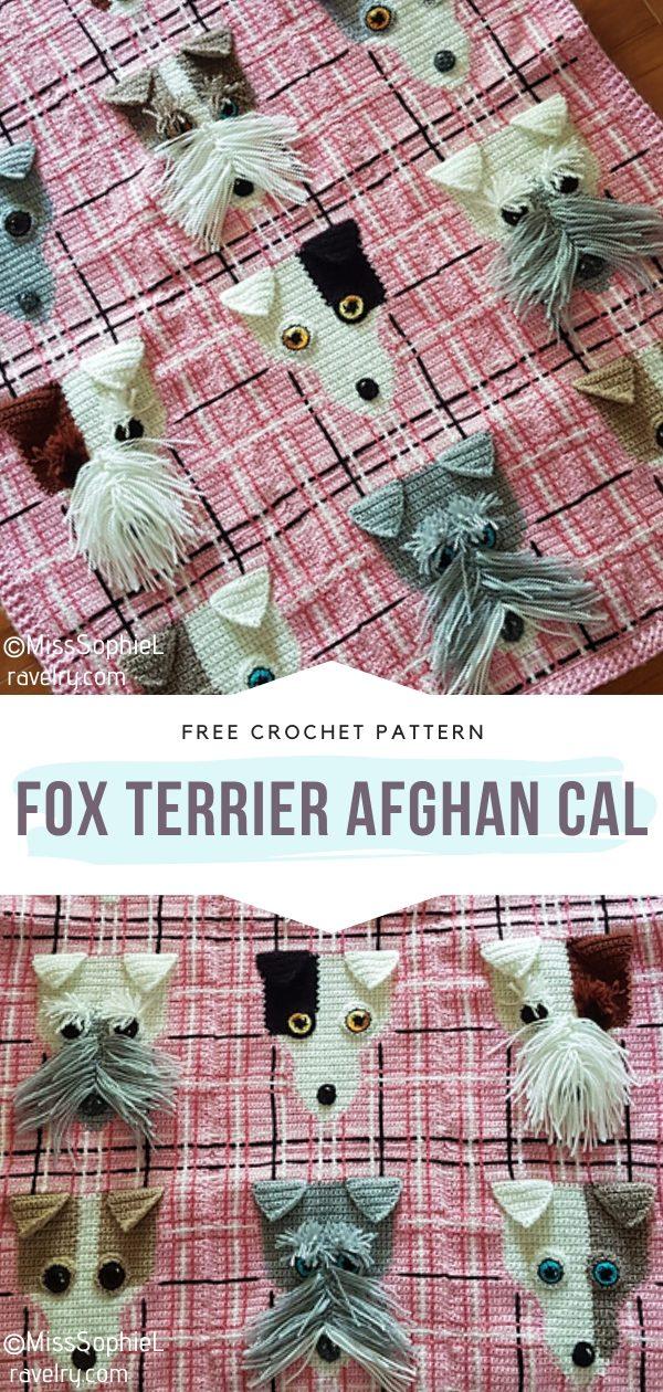 Fox Terrier Afghan CAL