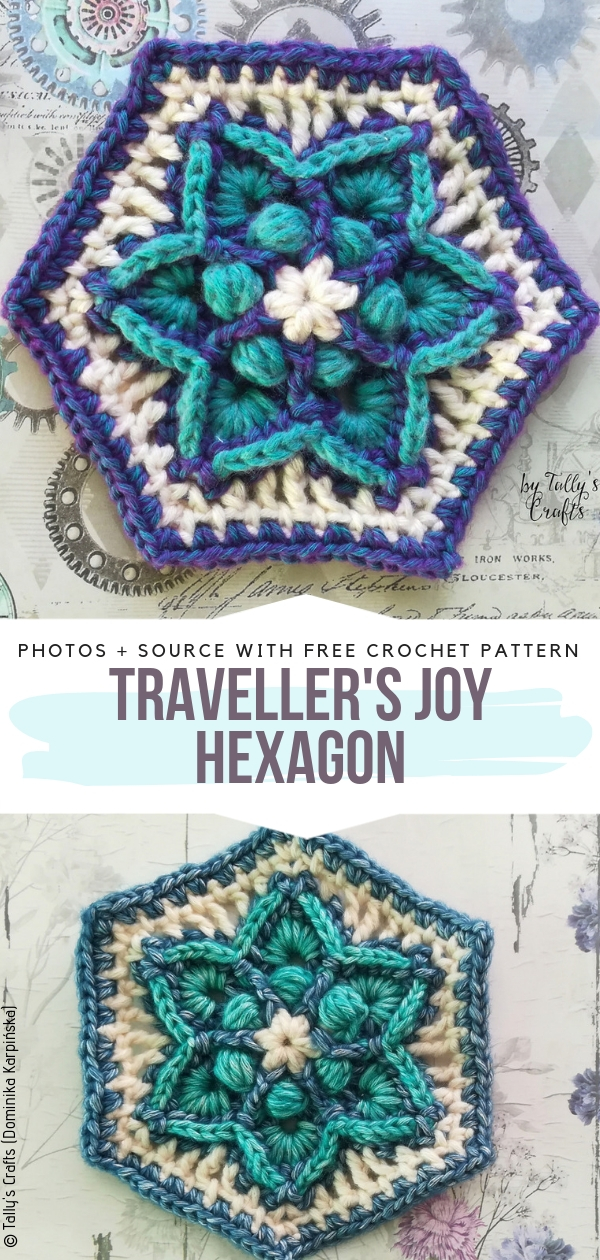 Traveller's Joy HexagonFree Crochet Pattern