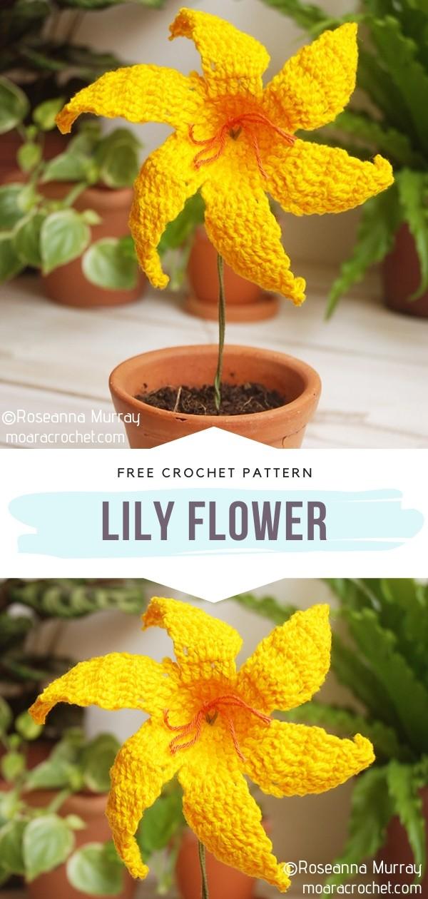 Lily Crochet Flower