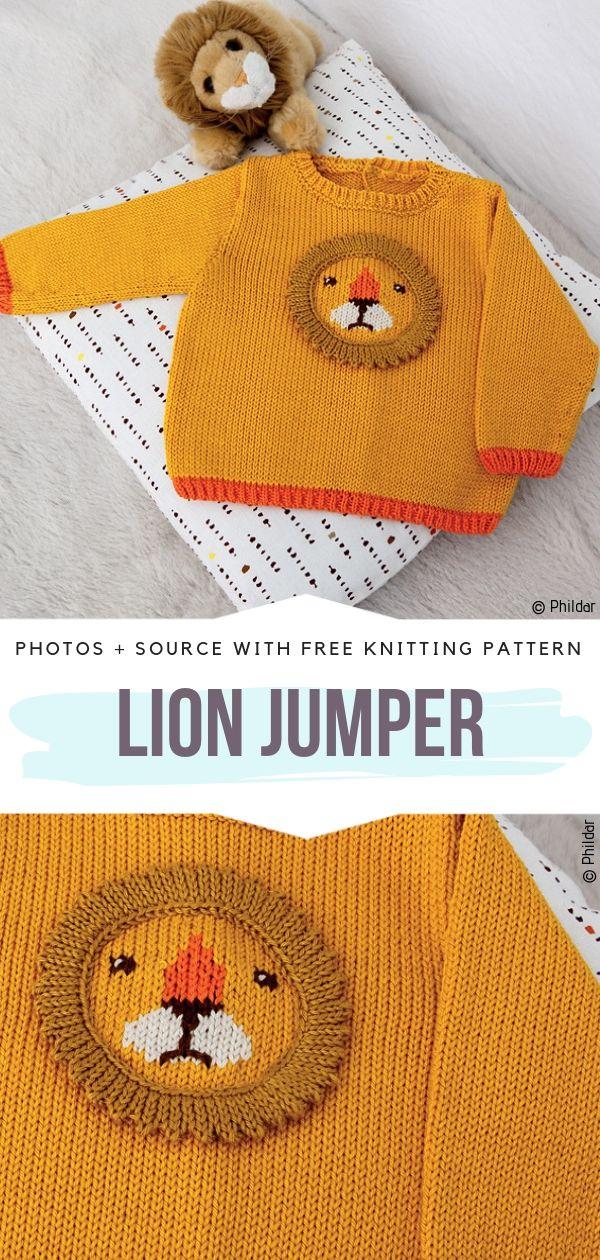 Lion Jumper Free Knitting Pattern