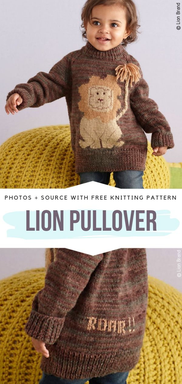 Lion Pullover Free Knitting Pattern