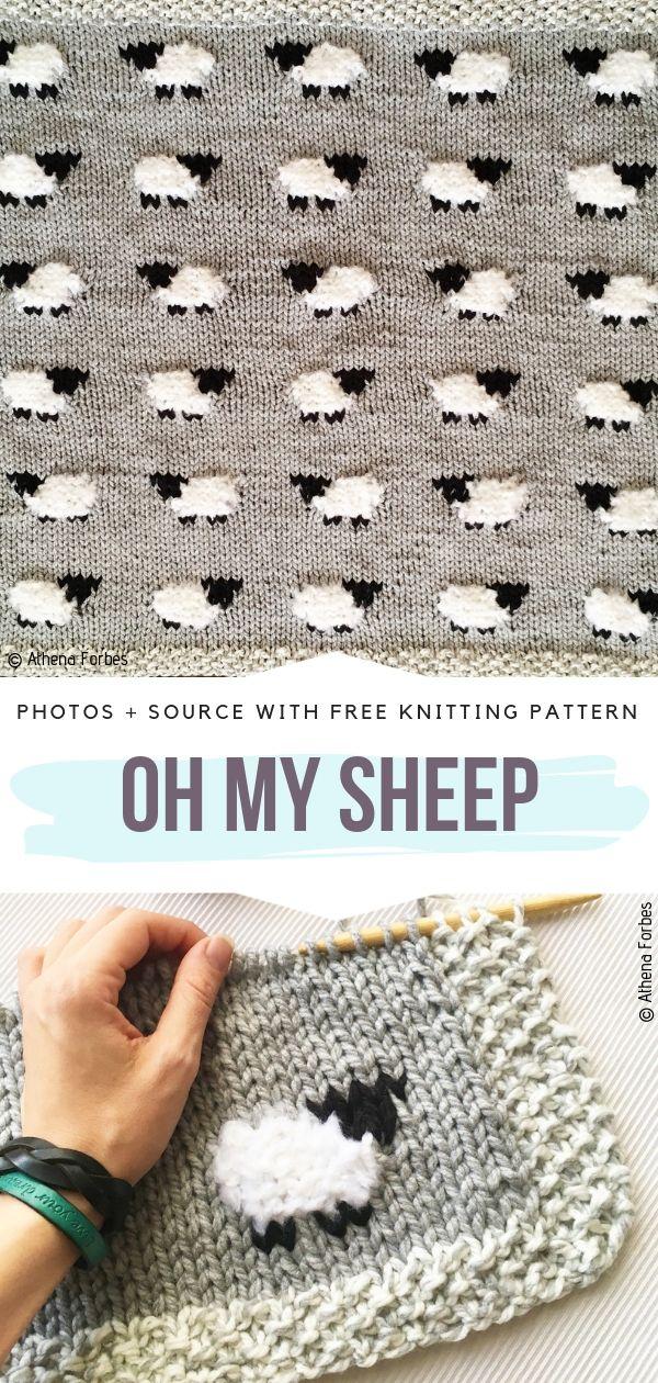 Cute Baby Blanket Oh My Sheep Free Knitting Pattern