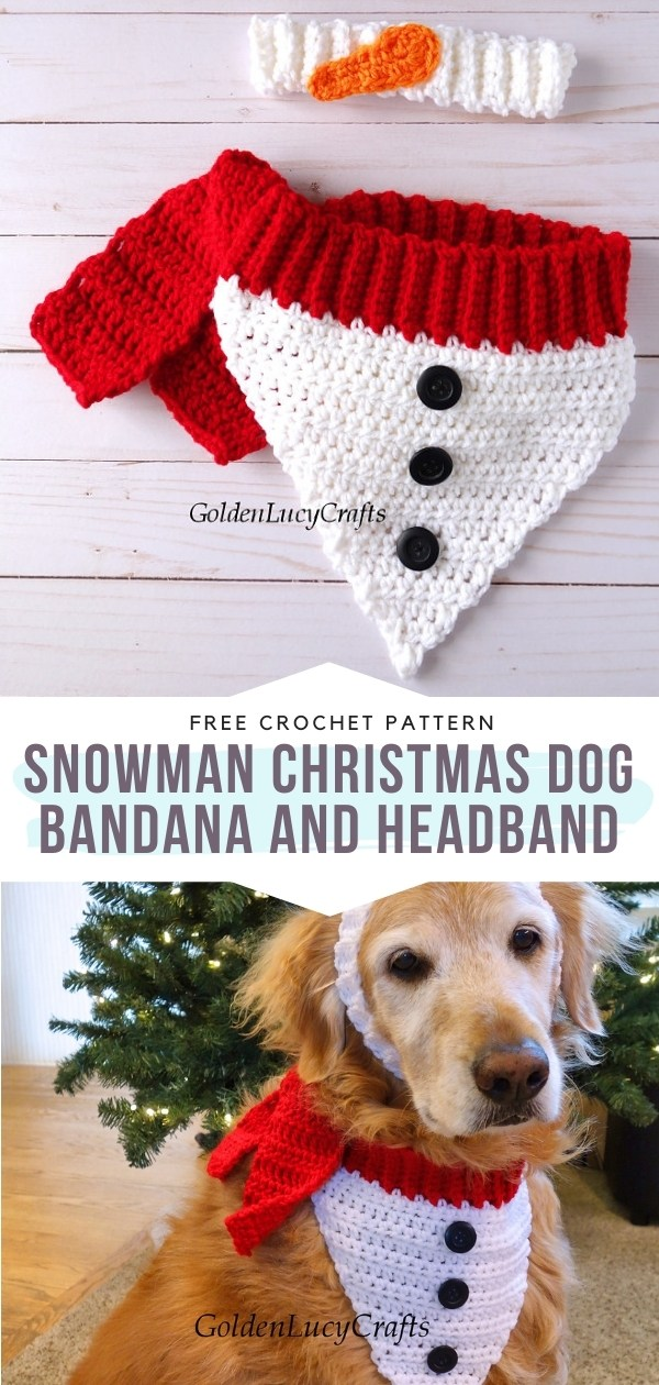 Dog Bandana and Headband