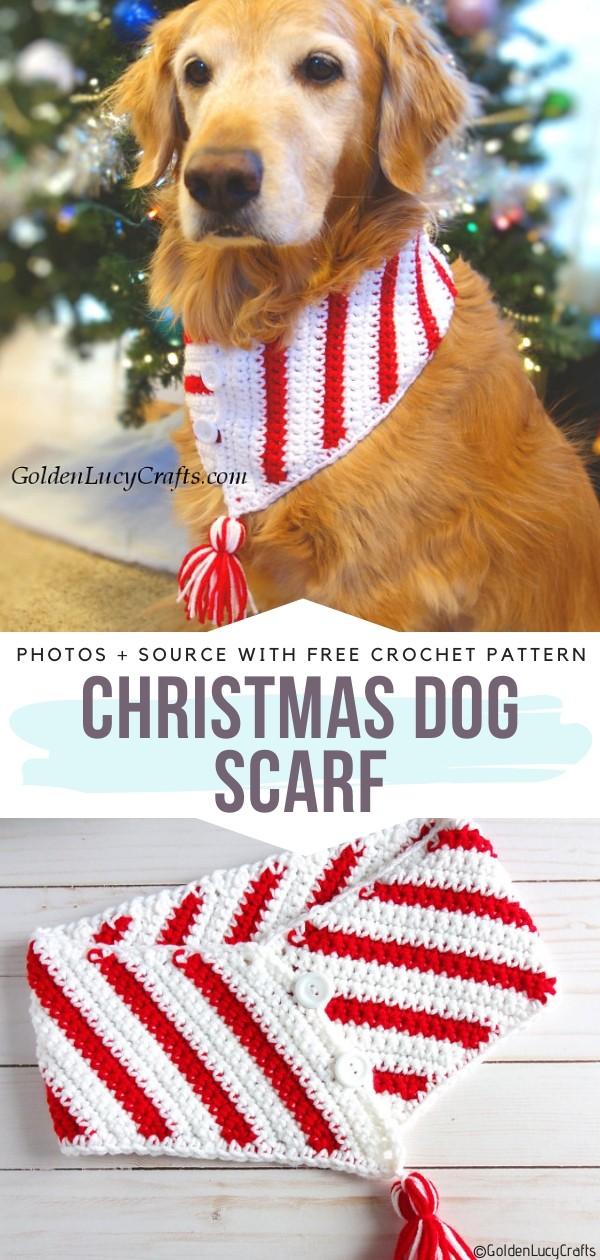 Christmas Dog Scarf