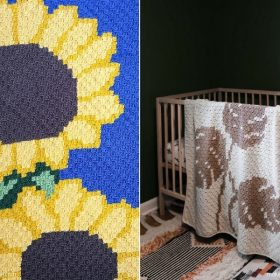 C2C Blankets Inspired by Nature with Free Crochet Patterns