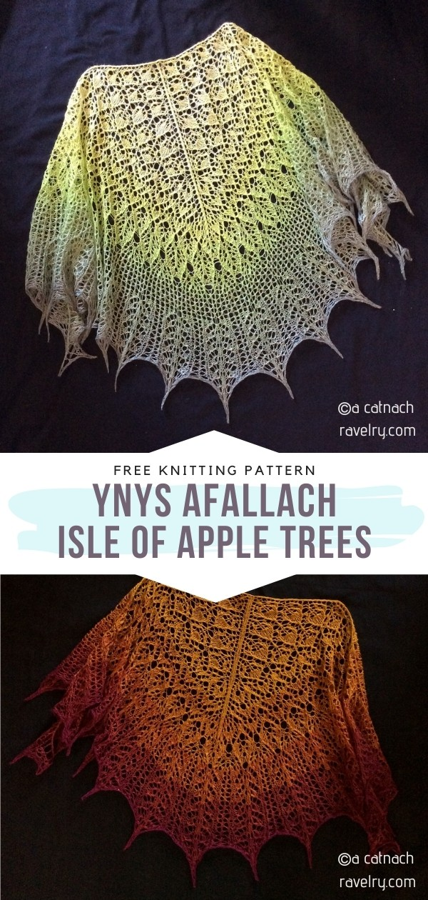 Lacy Knitted Shawls